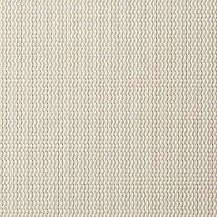 Roller Blinds. Sunscreen Vivid Shade White Bone